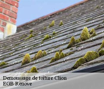 Demoussage de toiture  clion-36700 EGB Renove