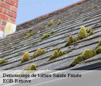 Demoussage de toiture  sainte-fauste-36100 EGB Renove